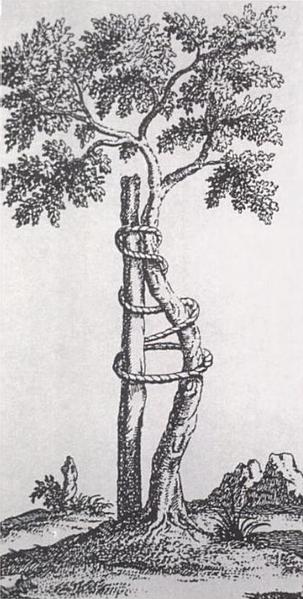 303px-Andry_tree