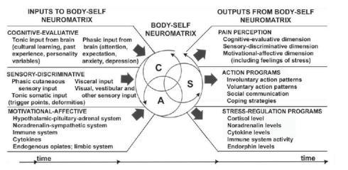 neuromatrix